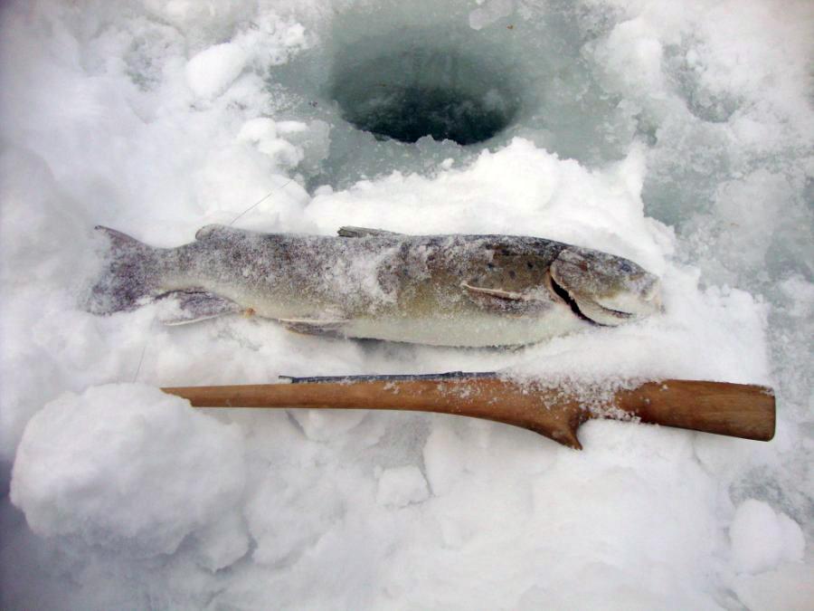 зимния рыбалка на хариуса и ленка