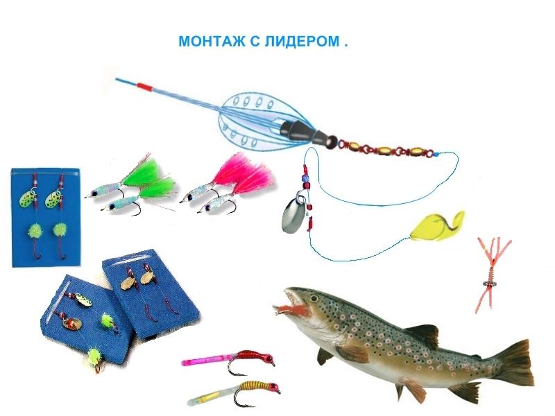 применение бомбард в рыбалке