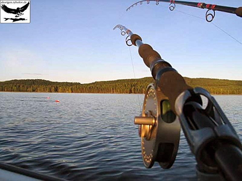 что такое троллинговая ловля рыбы