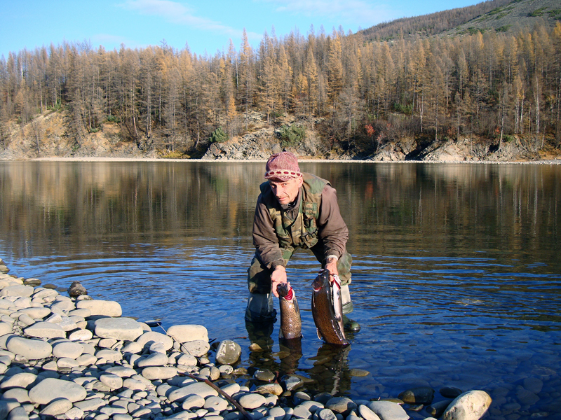 отчеты с рыбалок в тайге