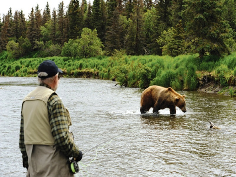 медведь и человек на рыбалке фото
