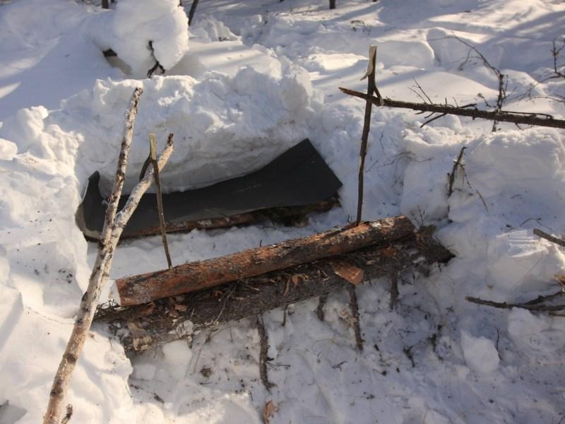Охота в Новом Свете: Охота на бобра зимой, Уроки онлайн смотреть бесплатно