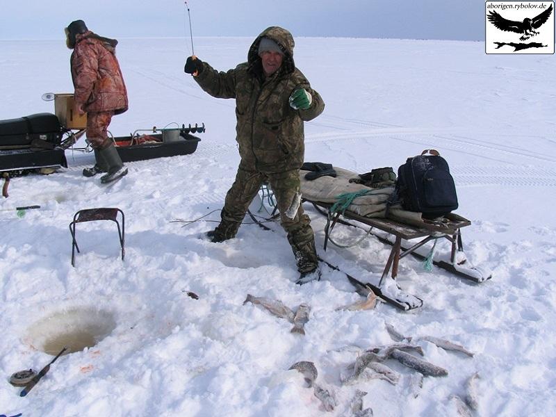 рыбалка на северных реках россии видео 2014