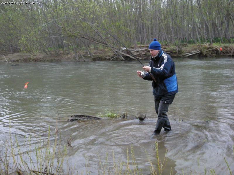 рыбалка при паводке