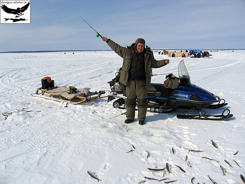рыбалка на корюшку. на что ее лучше ловить