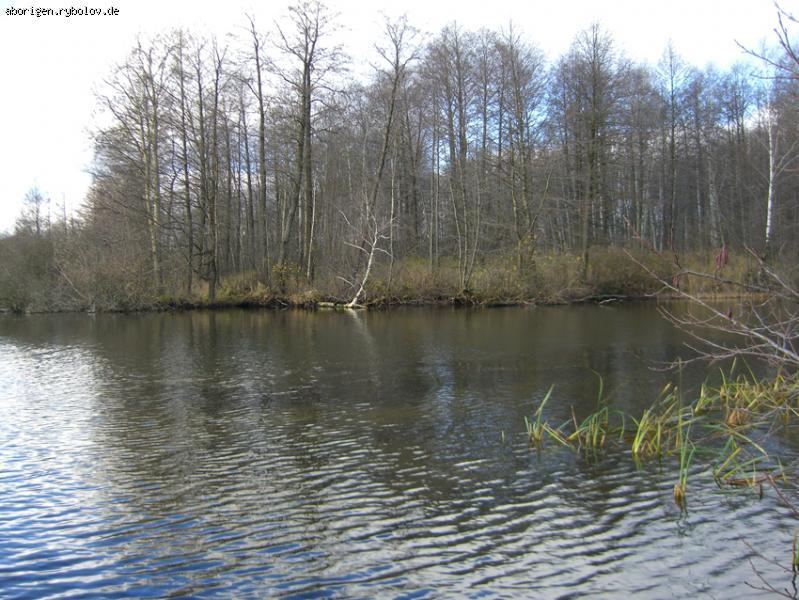 рыбалка на старом канале в шатуре
