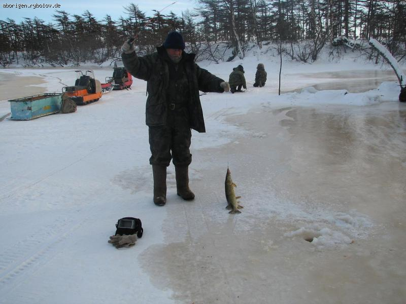 штраф за рыболовные косынки