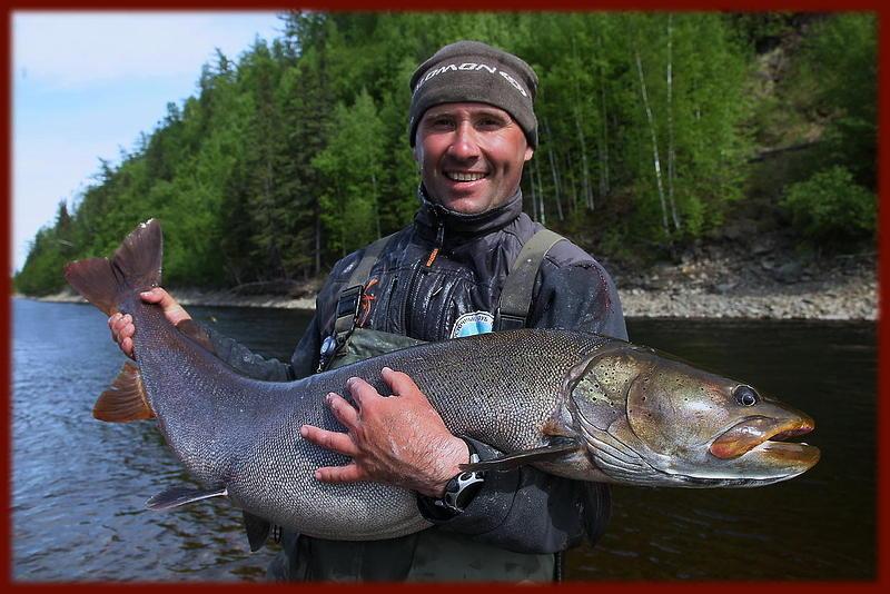 ловля тайменя на северных реках