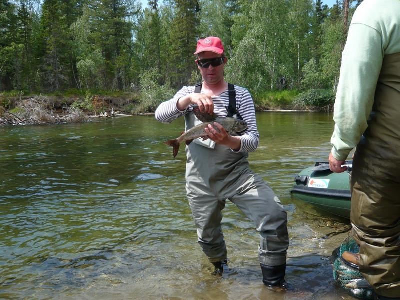 рыбалка на хариуса в братске
