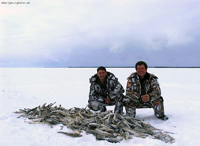 когда ловить рыбу во владивостоке