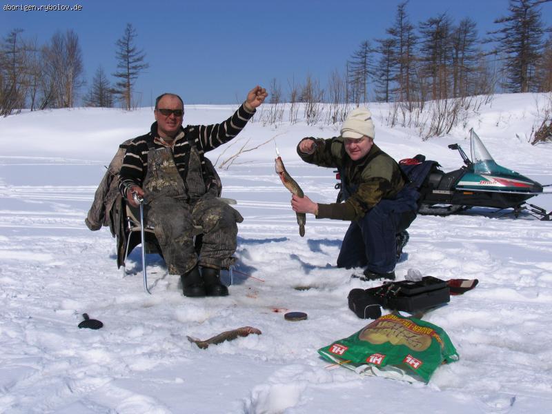 где и когда ловить налима на ладоге