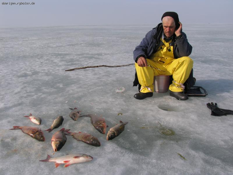 ловля раков новосибирская область